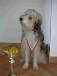 Brilli mit Medaille und Pokal