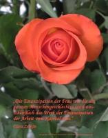 Grußkarte zum Internationalen Frauentag mit roter Rose und einem deutschsprachigem Zitat von Clara Zetkin: Die Emanzipation der Frau wie die des ganzen Menschengeschlechtes wird ausschließlich das Werk der Emanzipation der Arbeit vom Kapital sein.