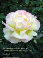 Grußkarte zum Internationalen Frauentag mit weißer Rose und einem deutschsprachigem Zitat von Coco Chanel: Ein Mann kann anziehen, was er will - er bleibt doch nur ein Accessoire der Frau.