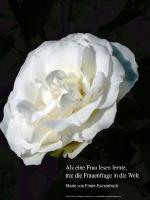 Grußkarte zum Internationalen Frauentag mit weißer Rose und einem deutschsprachigem Zitat von  Maria von Ebner Eschenbach: Als eine Frau lesen lernte, trat die Frauenfrage in die Welt.