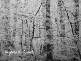 Weihnachtskarte Wald im Nebel mit Text