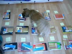 Zwetschke hilft bei der Bücherauswahl-1
